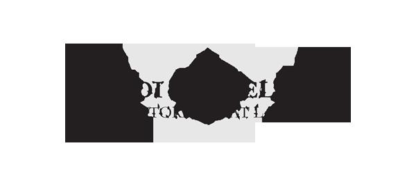 Synodi & Videll, LLC logo
